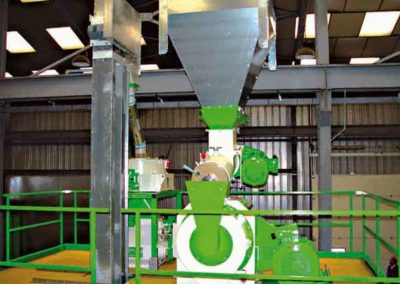 Granulation Lebensmittel Gruppe TOY: Pelletpresse