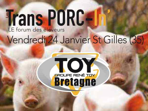 trans-porc-in_TOY-2
